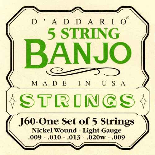 D´addario J60 5 String Banjo, Stainless Steel, Light, [10 20